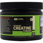 Optimum Nutrition Micronized Creatine Powder Kreatīns